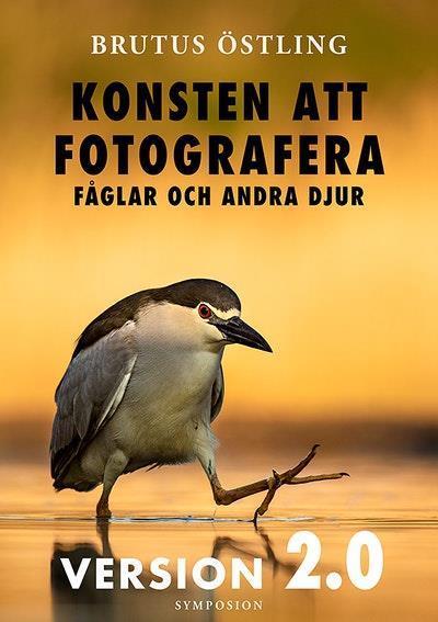 Konsten att fotografera fåglar och andra djur : version 2.0
