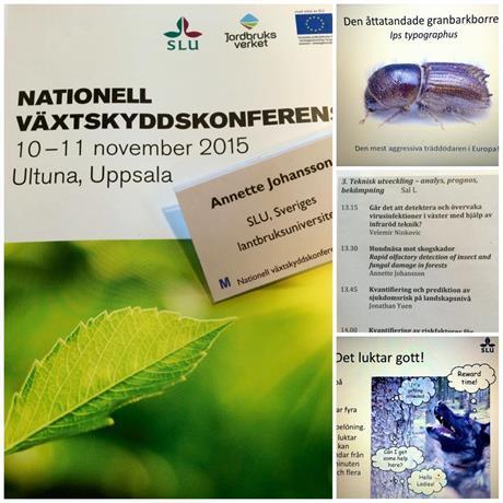 Växtskyddskonferens