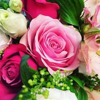 Blomsterprenumeration 150kr varje vecka