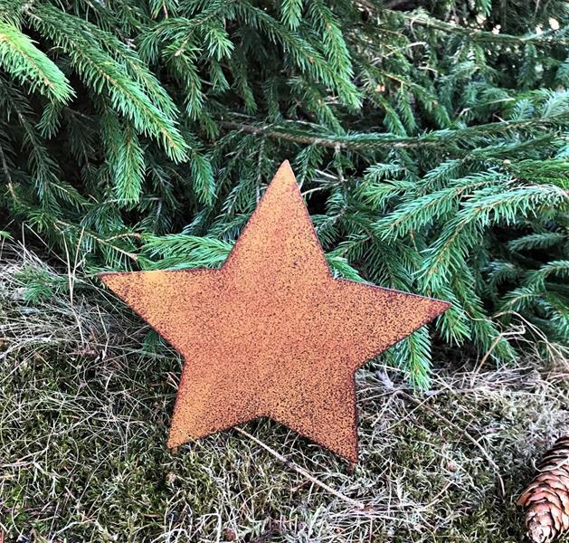 Stjärna på två stavar att sticka ner