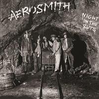 Aerosmith-Night In the Ruts(RSD)