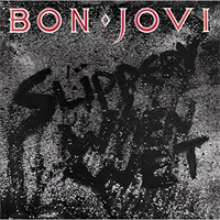 Bon Jovi-Slippery when wet