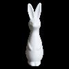 Rabbit, Large