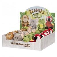 Teddy wild beanies Apa