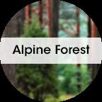 My Fresh refill, Alpine Forrest