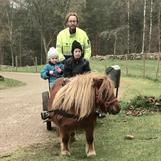 Gårdskarlen Lars, drängarna Siri och Noel och vår egensinniga shetlandsponny Julia-Viol