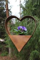 Litet hjärta hängande för plantering