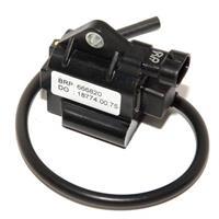 Rotax Coil Max/DD2 EVO