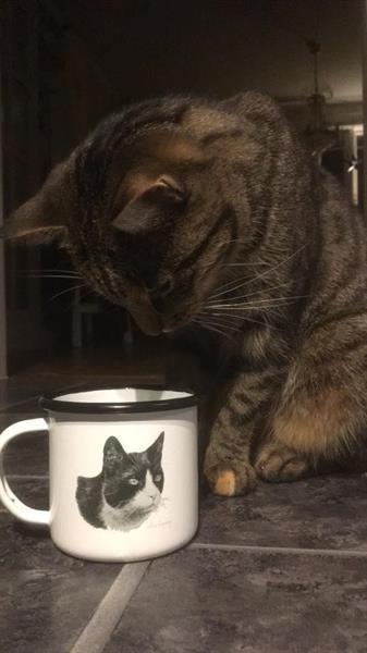 Emaljmugg Katt