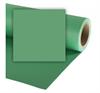 Colorama - 2.72x11m - Apple Green
