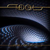 TOOL-Fear Inoculum(LTD CD Box)