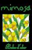 Mimosa roll-on 5ml tester