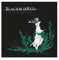 BLACKBOXRED-SALT IN MY EYES(LTD)