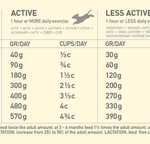 Acana single Lam 2kg
