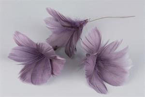fjäderblomma lila