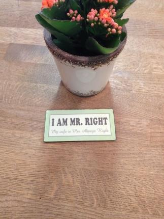 Magnet: I am mr. Right My wife is mrs. Always righ