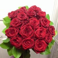 20 röda rosor med grönt