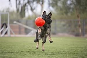 Jolly Soccer ball M
