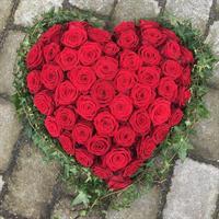 Hjärta Nisse