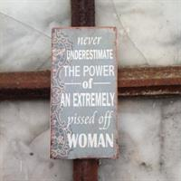 Magnet Never underestimate the power of an extreme