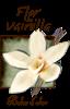 Flore de vanilla roll-on 5ml tester