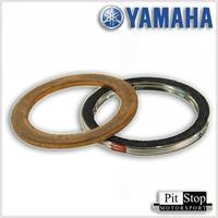 Yamaha Eksos pakning