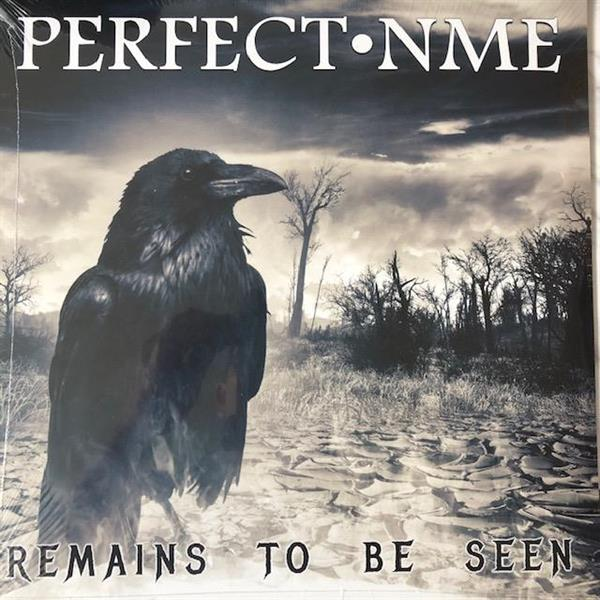 PERFECT NME-Remains To Be Seen(LTD)