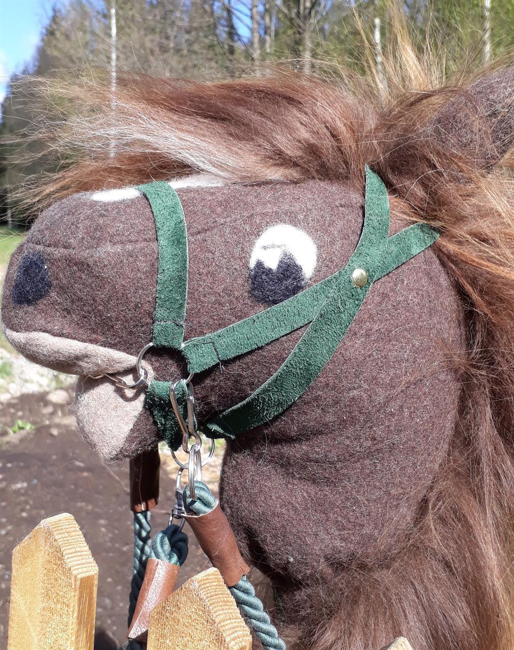 Träns med bett häst grönt läder