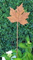 Lönnblad på stav