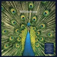 BLUETONES-EXPECTING TO FLY