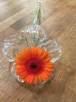 Låg liggande vas i glas i form av en blomma.- Stor