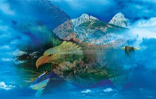 Puslespill Eagle Dreamscape, 550 brikker