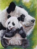 Diamond Painting, Panda 24,5*34,5cm (A301) FPR