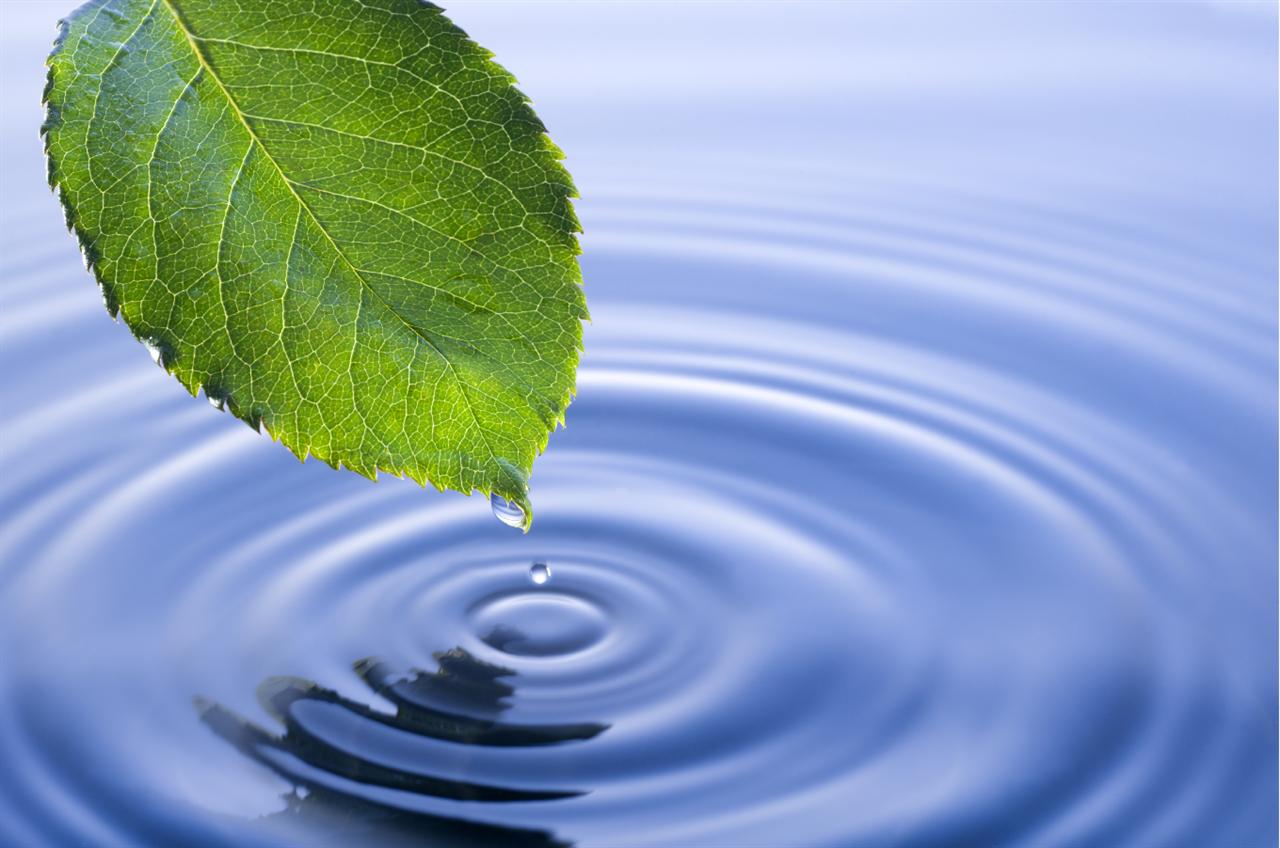 Bäst på miljöarbete i Sverige