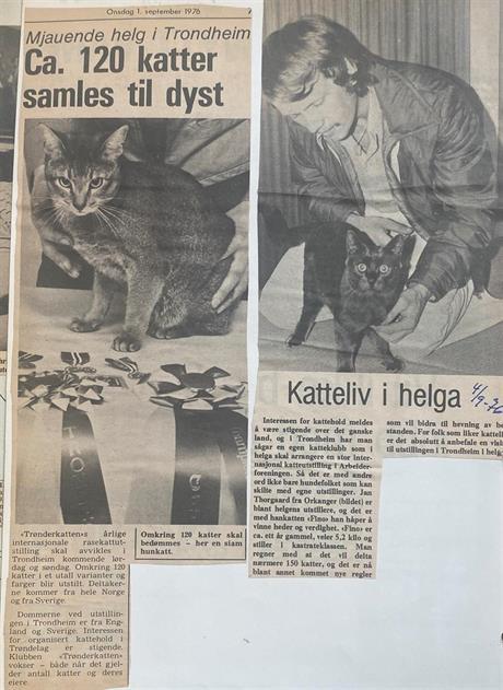 01.09.1976