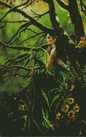 Diamond Painting, Eventyrprinsesse grønn 50*80cm FPR