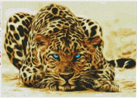 Diamond Painting, Leopard 50*40cm FPR