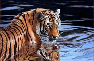 Diamond Painting, Tiger i vannkanten 50*40cm GLITTER