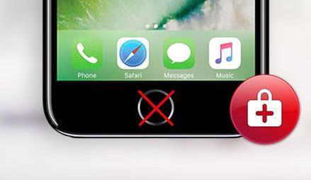 iPhone 7/7+/8/8+ hjem knapp reparasjon