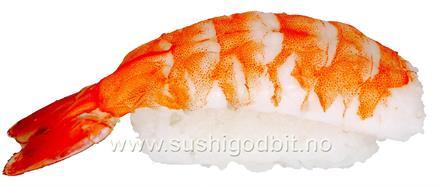 Sushi ebi nigiri *SK
