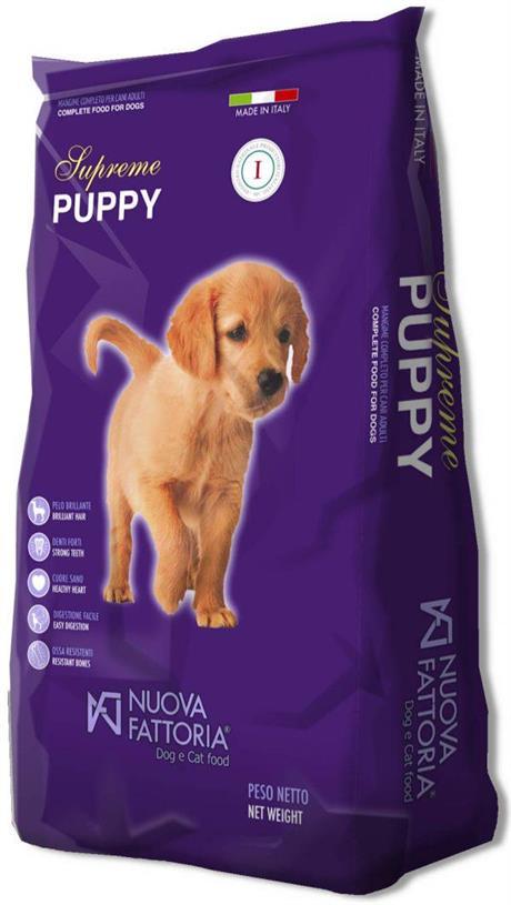 Supreme Puppy