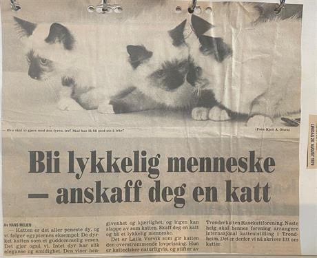 28.08.1976