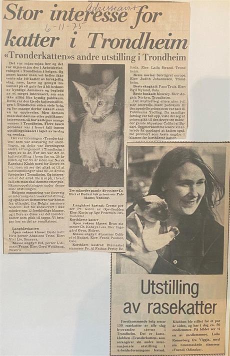 Adresseavisen 06.11.1975
