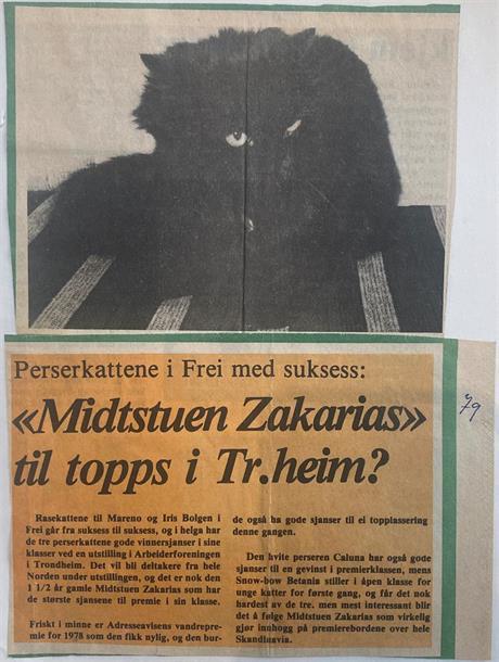 Adresseavisen 1979