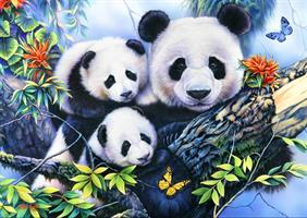 Puslespill Panda Family, 1000 brikker