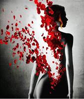 Diamond Painting, Dame m/røde roseblader 40*50cm FPR