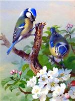 Diamond Painting, Fugler blå 20*25cm (A0202) FPK