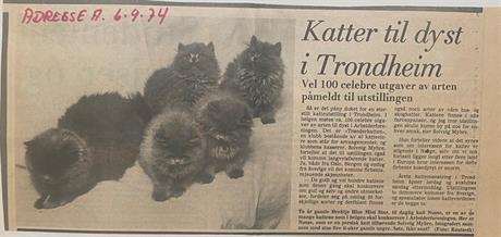 Adresseavisen 06.09.1974
