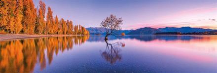 Puslespill Panorama Lake Wanaka Tree, 1000 brikker