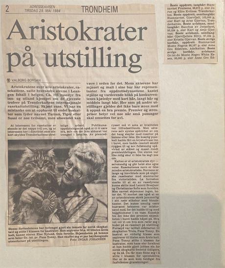 Adresseavisen 29.05.1984